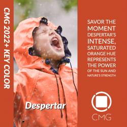 Color Marketing Group® Announces 2022+ Latin American Key Color – Despertar (Awakening)